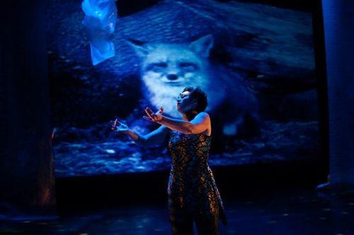 Photo by Keira Heu Jwyn Chang, Deborah Slater Dance Theater