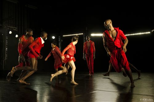 Photo Peggy Woolsey_dancersAnna Schön, Raja Feather Kelly, Dwayne Brown, Rhetta Aleong, Lawrence Harding, Paul Hamilton, Clement Mensah