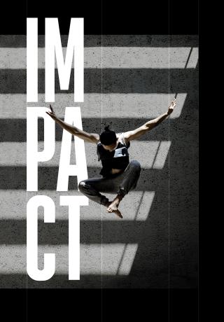 Impact-social-hein-1-logo.